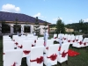 belvedere-nunta-la-piscina-4